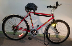 RALEIGH ANNIVERSARY SPECIAL EDITION MEN'S BIKE