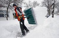 Snow Removal / Salting $40 flat