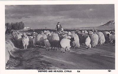 CYPRUS POSTCARD SHEPHERD AND HIS FLOCK MANGOIAN NO G6