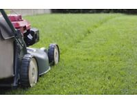 Grass Cutting Services Wales
