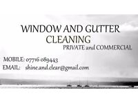 windows and gutters cleaning