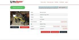 Cargo E-Bike For SALE