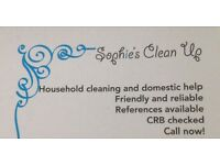 Domestic/householdhelp/commercial cleaner