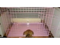 Small dog/pet cage