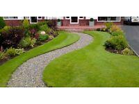 🍃4 Seasons Gardening🍃 VISITS FROM ONLY £10 - FREE quotes - Gardener - Gardening -