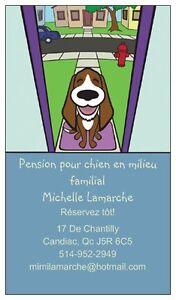 Pension pour chien à Candiac en milieu familial