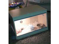 Reptile vivarium with extras