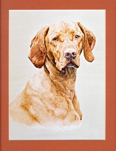 Rhodesian Ridgeback Signed Art Print by UK Artist CAH Marshall*