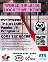 Hey Girls! Come Learn Hockey for FREE!
