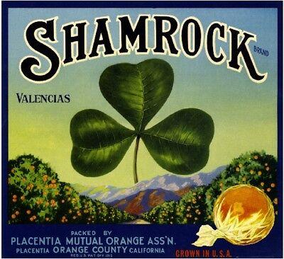 Placentia Shamrock St. Patrick's Day Orange Citrus Fruit Crate Label Art - St Patrick's Day Art