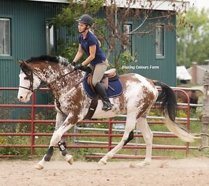 Tack sale and Open House  June 17