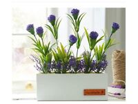 Lavender Window Box