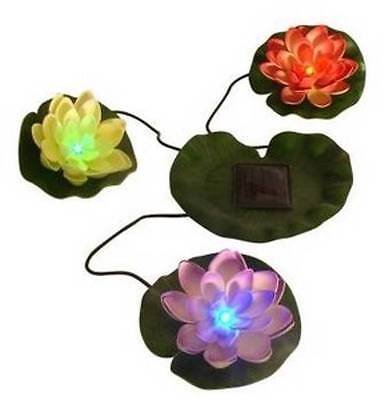 Beckett Solar LED Lily Pads-Decorative floating water lilies/pond - Lily Pad Solar Light