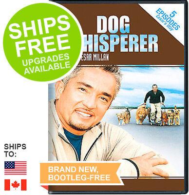 Dog Whisperer with Cesar Millan (DVD, 2006) NEW, Sealed
