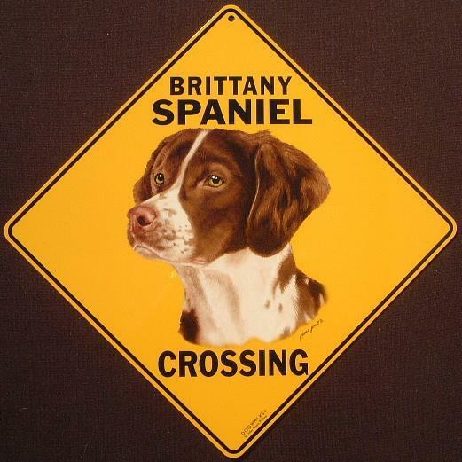 BRITANY SPANIEL CROSSING SIGN 16 1/2 by 16 1/2 NEW  dogs  decor  signs animals