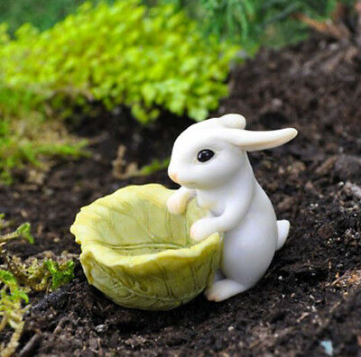 FAIRY GARDEN MINIATURE Bunny Rabbit with a Cabbage Planter Figurine NEW #G17452