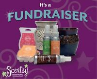 Looking for a Fundraising Idea? Contact me!!