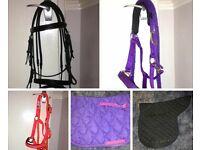 Equestrian tack & equipment