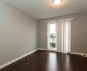 In need of a roommate for winter sublet!