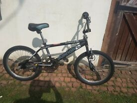 Raleigh Freestyle Burner 20 with Gyro system