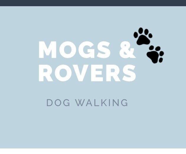 Dog walker & pet care, East Fife