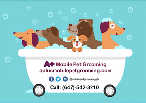 Mobile Pet Grooming Services Toronto & GTA/ Dog and Cat Grooming
