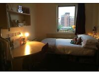 Student Accomodation- Single room with Ensuite