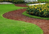 Yard care and landscaping services