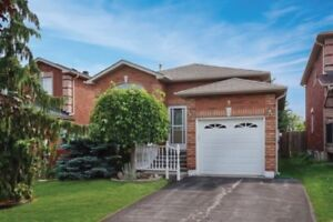 NEW 2bd BASEMENT FOR RENT IN SOUTH BARRIE