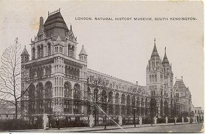 CPA ANGLETERRE ENGLAND LONDRES LONDON natural history museum kensington (Londres Natural)