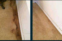 Professional Deep Carpet & Upholstery Cleaning (*SPECIAL!*)