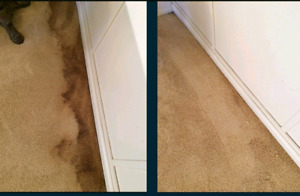 Professional Deep Carpet & Upholstery Cleaning 2 rooms $79.99