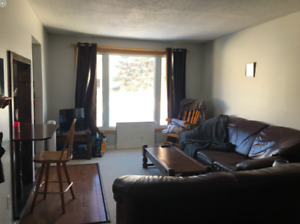 Looking for 3 female student roommates to rent in house