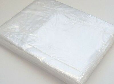 500 Clear Polythene Plastic Poly Bags 10 x 12 Inch Storage Food Grade 120g