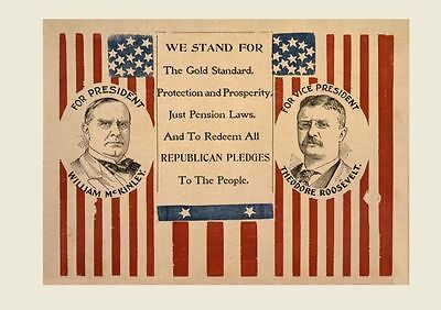 1900 Teddy Roosevelt Campaign Sign PHOTO William McKinley Republican President