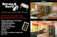 Spray & Save - kitchen painting , trim, doors and so much more