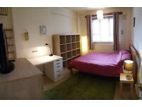 spacious double room, Polish, German! minutes to Elephant and Castle
