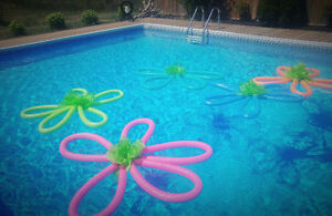 Endless Pool Kijiji Free Classifieds In Ontario Find A
