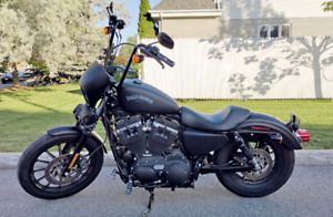 Harley 883 Superb Conditions w/ Extras!