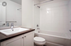 Room for rent at king george blvd & 81 ave