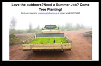 Looking for tree planters.  Starting May 1st.
