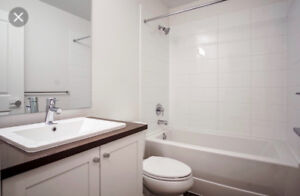New Room for rent at king george blvd & 81 ave