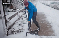 SHOVELERS NEEDED PAID WEEKLY