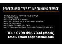 Tree Stump Removal / Stump Grinding Service