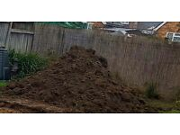 Free quality soil for you to collect