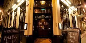 Golden fleece - Vibrant City Pub is looking for experienced & hard working Bar back