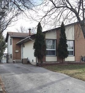 Open House Sunday, May 8! Great Investment Opportunity!