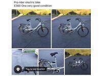 Pro rider electric bike
