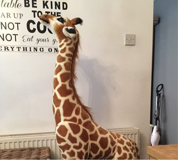 Melissa Doug Giant Giraffe Soft Toy In Seaton Delaval Tyne And