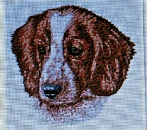 Welsh Springer Spaniel Dog Breed Bathroom 2 HAND TOWELS EMBROIDERED Personalized